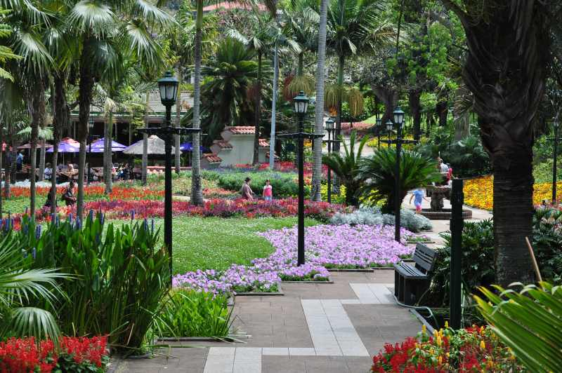 Mitchell Park, Durban - Pictures of this popular picnic site