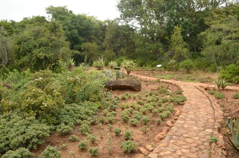 Pretoria National Botanical Garden Places Of Interest In Gauteng